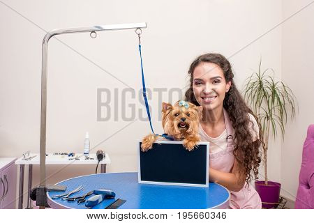 Beautiful Young Groomer And Cute Yorkshire Terrier Dog Holding Blank Board I Pet Salon