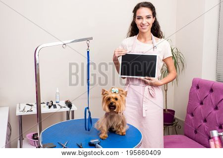 Smiling Professional Groomer Holding Blank Sign While Standing Near Cute Yorkshire Terrier Dog In Pe
