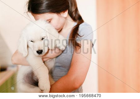 Young beautiful girl with a puppy of a golden labrador retriever in her arms, hugs, kisses and carries. The concept of love for animals, keeping dogs at home.