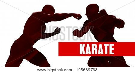 Karate Class with Silhouette of Two Men Fighting 3D Illustration Render