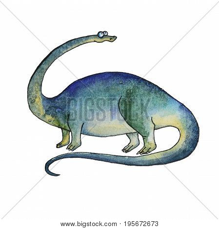 prehistoric dinosaur Diplodocus or brontosaurus was a herbivore sauropod of the Jurassic Period of Earths history. Fossil animals and reptiles in cartoon watercolor style.