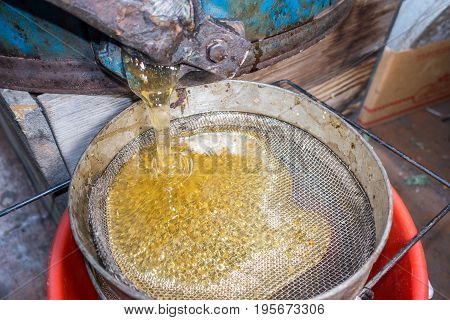 Strain the poured honey through a sieve. How to Harvest Honey. Filtering raw honey.
