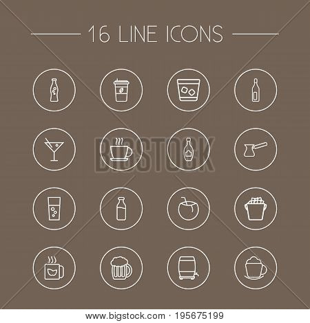 Set Of 16 Drinks Outline Icons Set.Collection Of Dairy, Soda, Coconut And Other Elements.