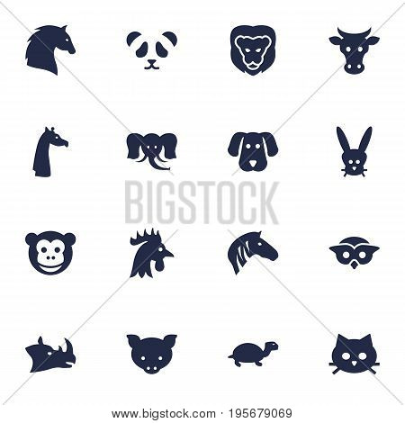 Set Of 16 Zoo Icons Set.Collection Of Bunny, Ape, Kine And Other Elements.