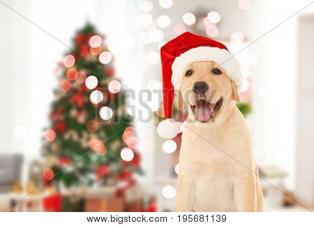 Cute puppy in Santa hat and blurred living room decorated for Christmas on background