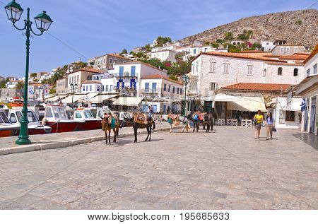 HYDRA ISLAND GREECE, MAY 27 2016: landscape of the port of Hydra island, with the traditional donkeys, the only mean of transport. Editorial use.