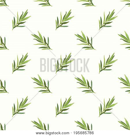 Seamless Background Image Colorful Watercolor Texture Vegetable Food Ingredient Tarragon