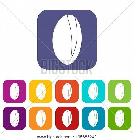 Pistachio nut icons set vector illustration in flat style In colors red, blue, green and other