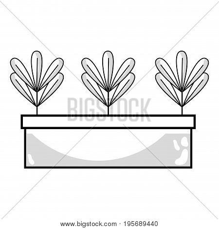 line ecological plant with leaves inside flowerpot vector illustration