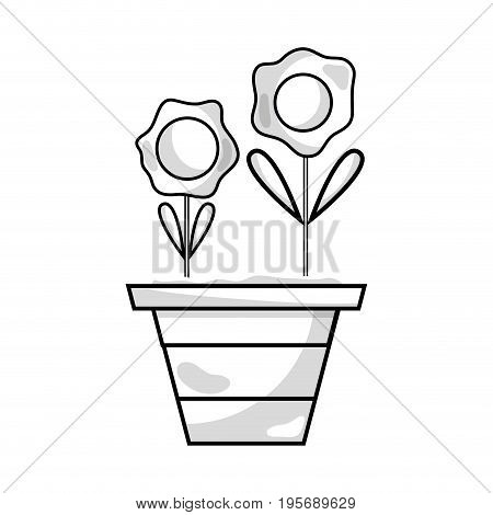 line flowers with petals and leaves inside plantpot vector illustration
