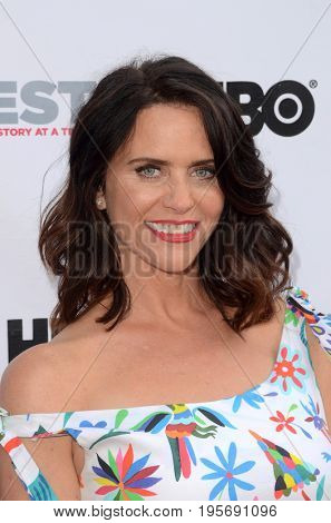 LOS ANGELES - July 15:  Amy Landecker at the