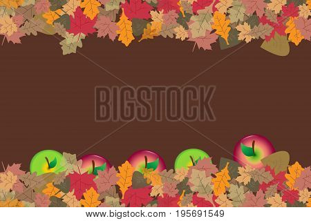 Red and green apples are fallen in colorful autumn leaves. Place for your text is in the center of the vector.
