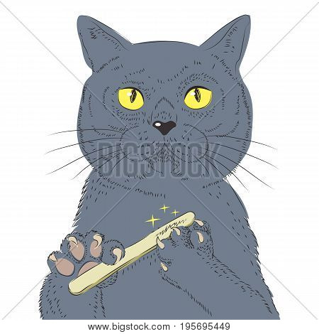 British Shorthair Cat Hand Draw Vector. Sketch Illustration Of Think Cat. Fashion Animal Illustration Anthropomorphic Design Furry Art Hand Drawn Cat Breed Vector. For Poster Or Print On Clothes.