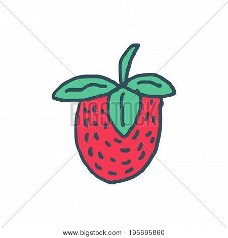 Strawberry Drawing Isolated. Red Juicy Berry On White Background