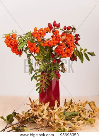 Autumn decoration in purple vase made from rowanberry and wild rose hips