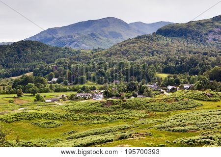 Stunning rural green landscapes in Lake District National Park, England, stone wall, cows, mountains on the background, selective focus