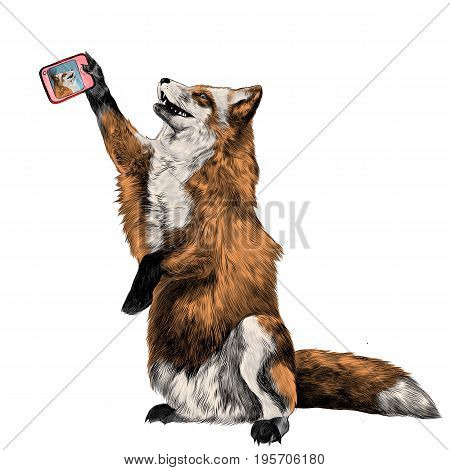 a Fox on its hind legs is photographed taking a selfie on the phone sketch vector graphics color picture