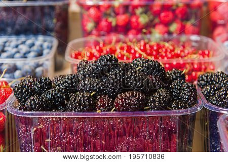 Fresh berries on display. Organic and fresh. Food background. Display on local farmers market. Mulberry closeup.