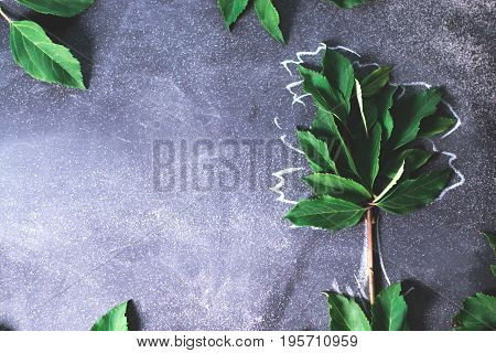 Abstract tree on a black background concept