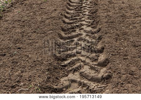 Tractor Tracks In The Field