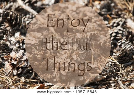 Texture Of Fir Or Pine Cone. Autumn Season Greeting Card. English Quote Enjoy The Little Things