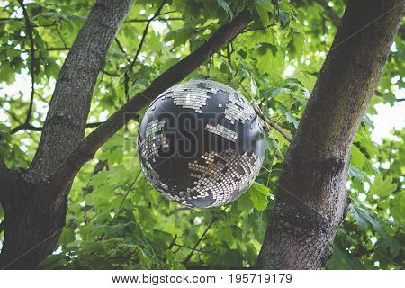 old disco ball hanging in trees disco ball