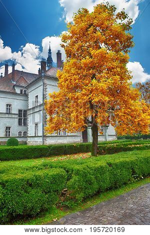 ancient castle in autumn. green lawn. Blue sky