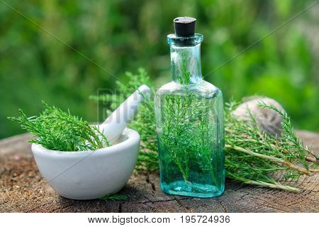 Bottle Of Juniper Infusion Or Potion, Mortar And Juniperus Communis Twigs. Herbal And Homeopathic Me