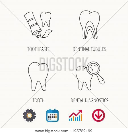 Tooth, dental diagnostics and toothpaste icons. Dentinal tubules linear sign. Calendar, Graph chart and Cogwheel signs. Download colored web icon. Vector
