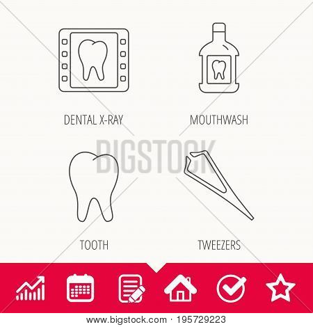 Mouthwash, tooth and dental x-ray icons. Tweezers linear sign. Edit document, Calendar and Graph chart signs. Star, Check and House web icons. Vector
