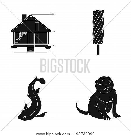 building, recreation, entertainment and other  icon in black style. tail, wool, care, icons in set collection
