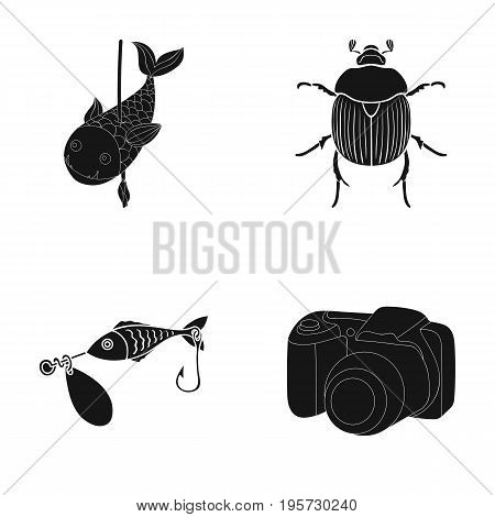 photography, video, ecology and other  icon in black style.tackle, accessories, camera icons in set collection.