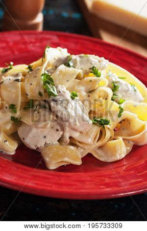 Italian fettuccine alfredo pasta in cheese and butter sauce
