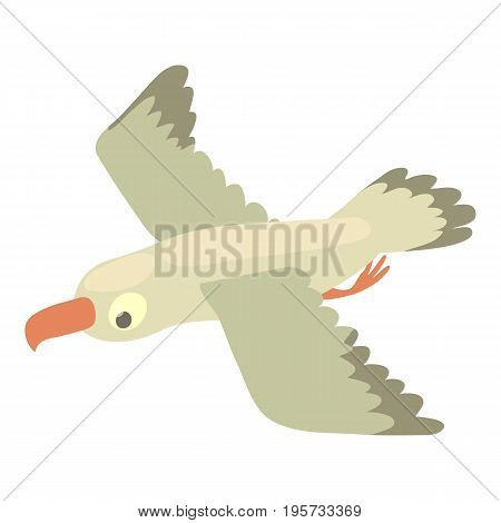 Gull icon. Cartoon illustration of gull vector icon for web