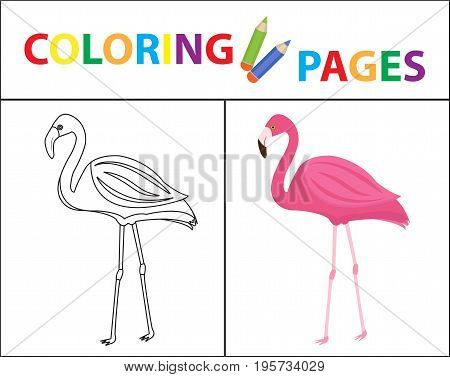 Coloring book page. Flamingo. Sketch outline and color version. Coloring for kids. Childrens education. Vector illustration