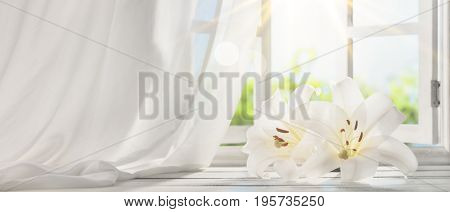 Picture frame near window with lily flower in the morning