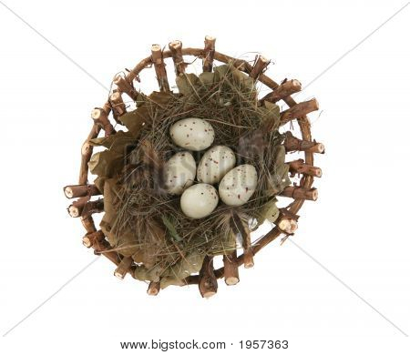 Spotted bird eggs in a nest isolated over white poster