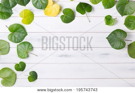Pattern Heart Shaped Green Leaf On White Wood Background