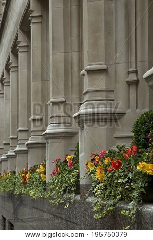 Several column with orange and yellow flowers