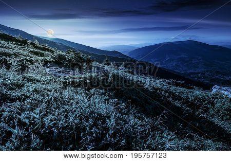 grassy meadow on hillside of mountain ridge at night in full moon light. wonderful Carpathian landscape