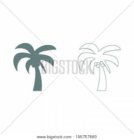 Palm  The Grey Set Icon .