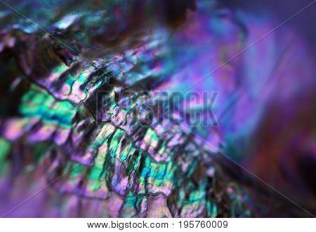 Gemstone Nacre Texture Close Up