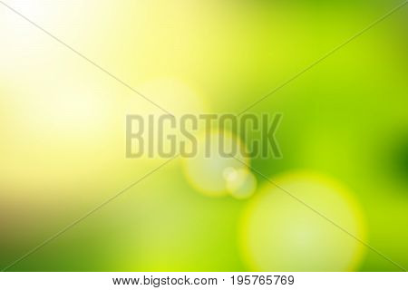 vector beautiful natural style of life. sunrise glitter lens flare, soft bokeh nature background , illustration natural color filter abstract simplicity for advertising products background.