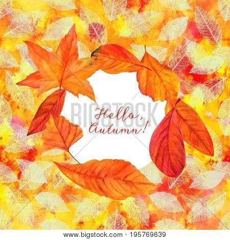 Hello, Autumn design with vibrant fall leaves, yellow and orange, on a texture of brush strokes and leaf silhouettes. An artistic template for a card, flier, or invitation