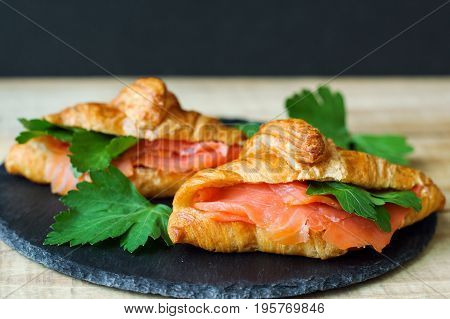 Breakfast sandwiches with mini croissants smoked salmon slices and parsley on black slate board. Croissants with red fish and herbs. Breakfast meal
