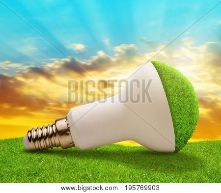 Eco LED bulb in grass at sunset. Energy saving lamp.