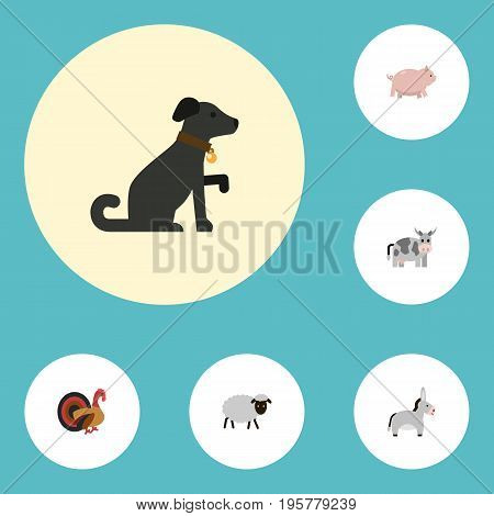 Flat Icons Jackass, Kine, Hound And Other Vector Elements