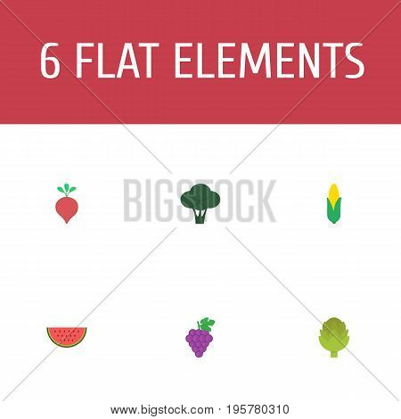 Flat Icons Melon Slice, Herbaceous Plant, Cabbage And Other Vector Elements