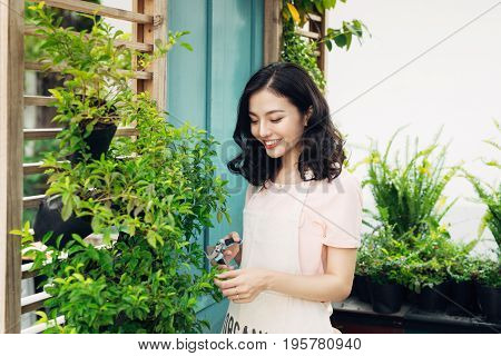 Cute Asian Woman Gardener Cutting Plants With Garden Scissors In Greenhouse