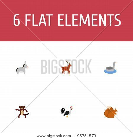 Flat Icons Waterbird, Jackass, Chipmunk And Other Vector Elements